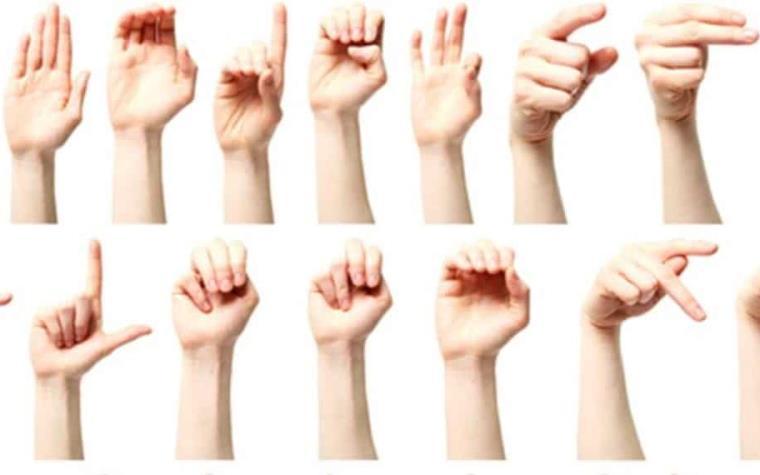 lengua de señas