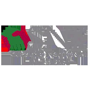 SERVICIO NACIONAL DE EMPLEO