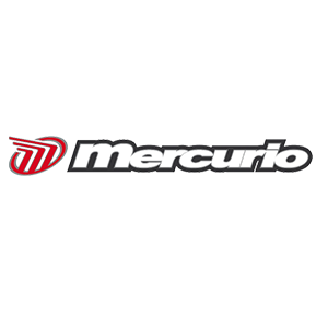 BICICLETAS MERCURIO
