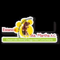 Estancia para el perro abandonado Santa Martha